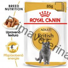 Royal Canin kapsička British Shorhair 12 x 85 g